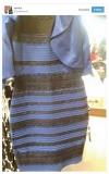 「白と金」「いや青と黒だ」あなたはどっちに見える? 1枚の写真をめぐりネットで激論