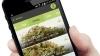 大麻を販売するスタートアップ「Flow Kana」とは?