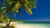 世界幸福度ランキング1位の国フィジーへの移住。「世界最幸」の4つの秘訣とは?