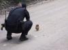 米コロラド州、保安官がフクロウの赤ちゃんを発見!