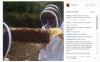 世界的ベーシスト何やってるんですか! ロックバンド「レッチリ」のフリーさん、なぜか養蜂に目覚めて18万匹のハチを飼育する