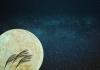 今年は中秋の名月からのスーパームーン! 2015年最大の月を眺めようよ