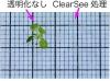 植物を丸ごと透明化 解剖不要で内部の観察可能に 名古屋大が成功