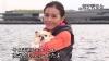 AKB、杉本彩さんなど160人がペットの命の大切さ訴え 神奈川県、「それが大事」動画を公開